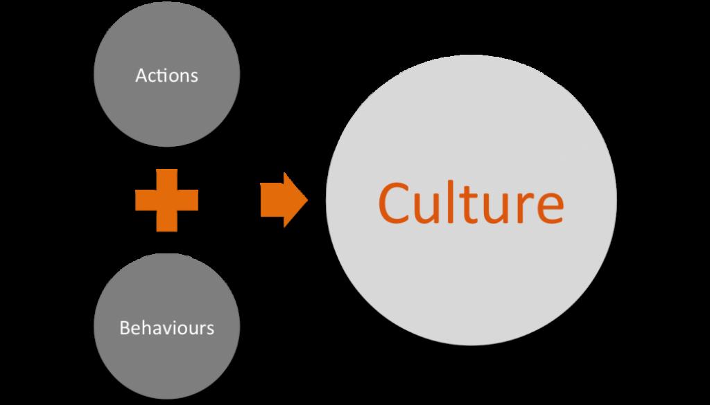 coltural principles